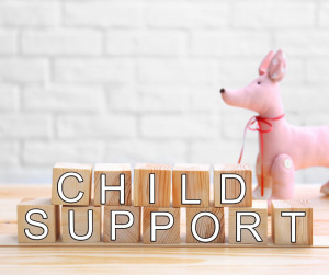 Photo of Family Law - Child Support 4